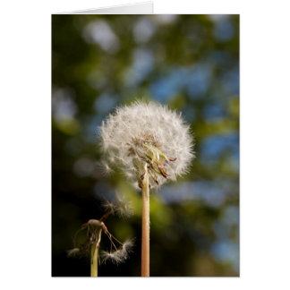 Dandelion Stationery Note Card