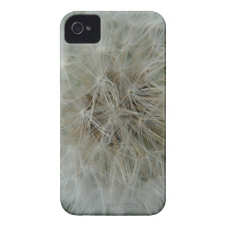 dandelion iPhone 4 case
