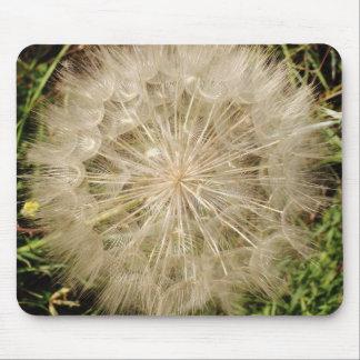 Dandelion Clock Close-Up Mouse Pad