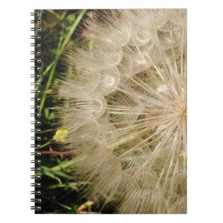 Dandelion Clock Close-Up Spiral Note Books