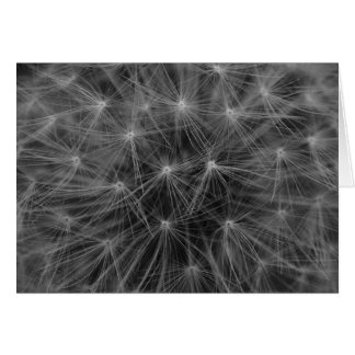 Dandelion Constellation Greeting Cards