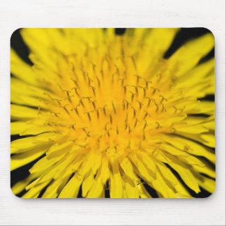 Dandelion Detail Mouse Pad