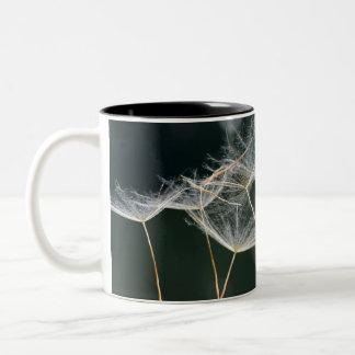 Dandelion Detail Two-Tone Coffee Mug