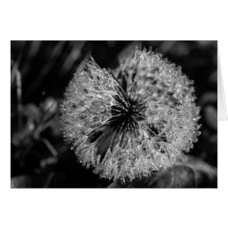 Dandelion Dew Notecard Stationery Note Card