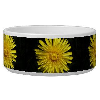 Dandelion Dog Bowl