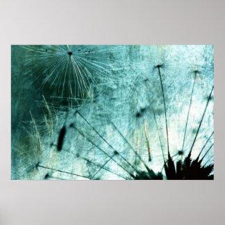 Dandelion especie - Pusteblume arte 2012 006 Póster