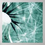 Dandelion especie - Pusteblume arte 2012 008 Impresiones