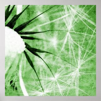 Dandelion especie - Pusteblume arte 2012 011 Póster