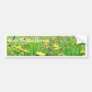 Dandelion Field Bumper Sticker