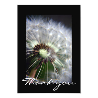 Dandelion floral Thank you card announcement