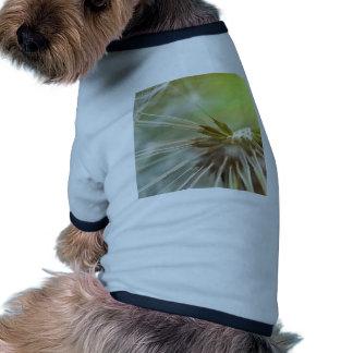 Dandelion Flower Doggie T Shirt