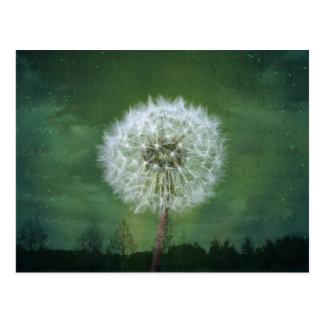 Dandelion Flower Fluff Starry Sky Art Postcard