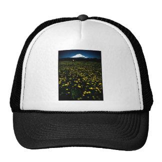 dandelion flower mountain trucker hat