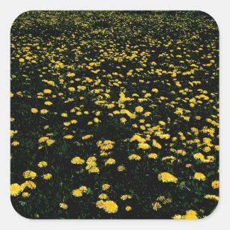 dandelion flower mountain square sticker