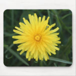 Dandelion Flower Mouse Pads