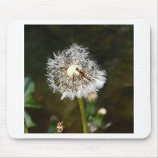 Dandelion Flower Mouse Pad