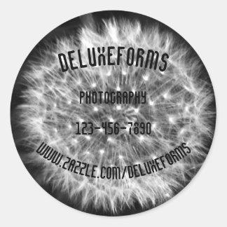 Dandelion Fuzz Classic Round Sticker