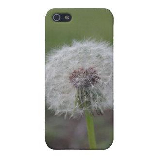 Dandelion Fuzz iPod Case