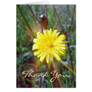 Dandelion Glow Card
