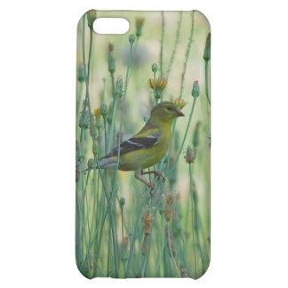 Dandelion Goldfinch Case For iPhone 5C