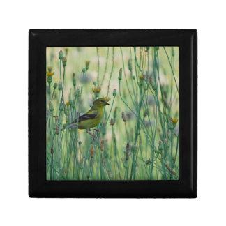 Dandelion Goldfinch Jewelry Box
