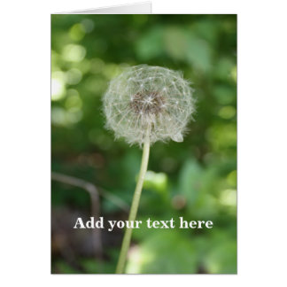 Dandelion Gone To Seed Photo & Customizable Text Card