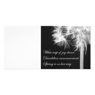 Dandelion Haiku Photo Card