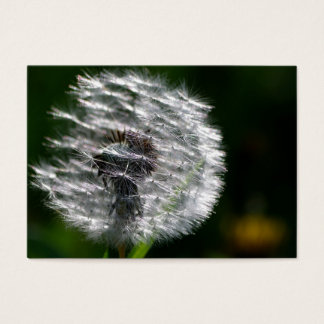 Dandelion Head Seed - Business Card