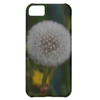 Dandelion In Seed iPhone 5C Cover