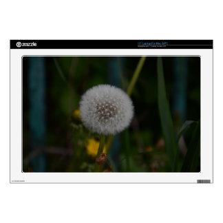 Dandelion In Seed Laptop Decal