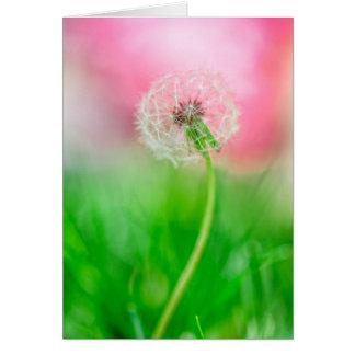 Dandelion in Spring Card