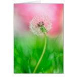Dandelion in Spring Greeting Card