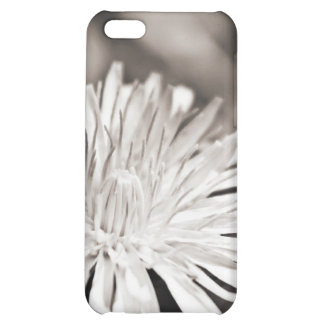 Dandelion iPhone 5C Covers