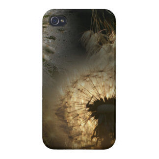 Dandelion iPhone 4 Cover