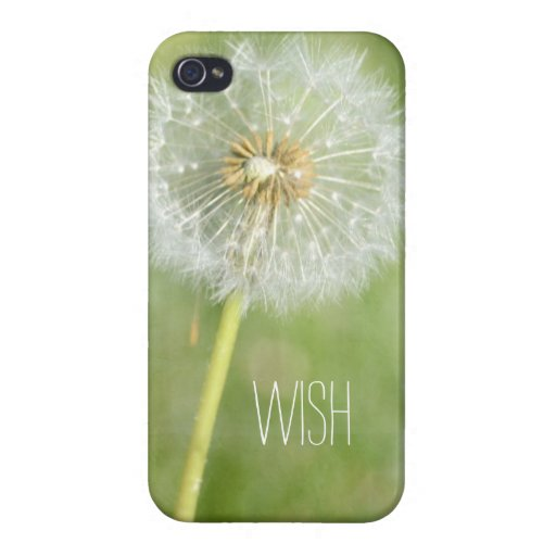 Dandelion Cases For iPhone 4