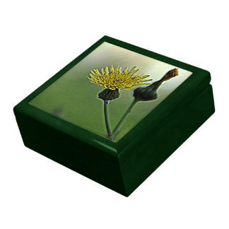 Dandelion Jewelry Box