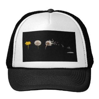 Dandelion Life Cycle Hat/Cap Trucker Hat