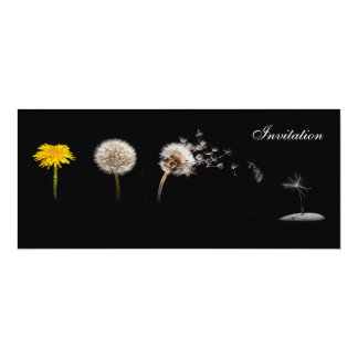 Dandelion Life Cycle Invitation