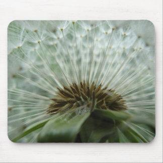 Dandelion Macro Mouse Pad