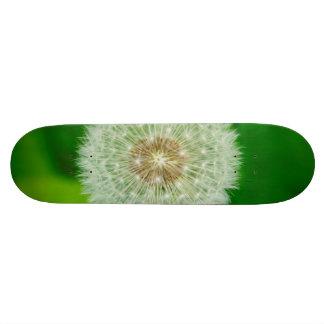 Dandelion macro custom skateboard