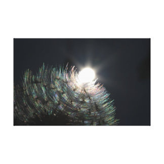 Dandelion Magic Canvas Print