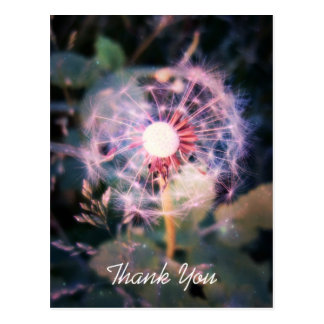 Dandelion Magic Postcard