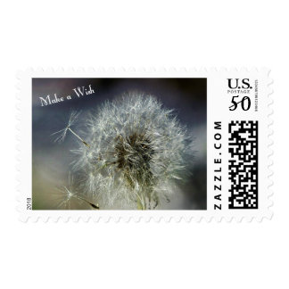 Dandelion Make A Wish Fine Art Photography Shot Postage