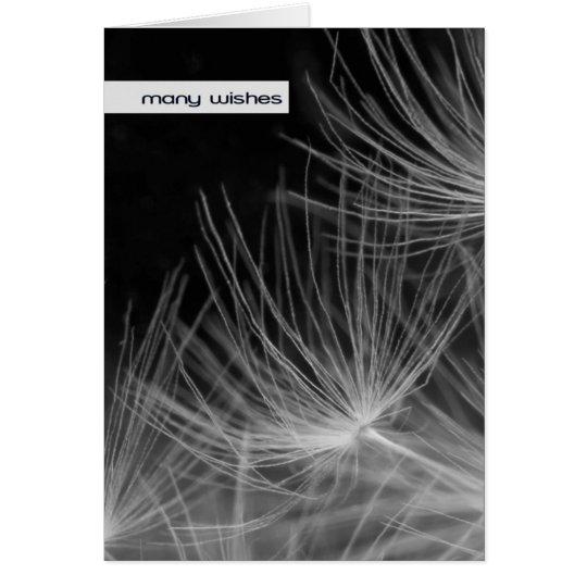 Dandelion - Many Birthday Wishes Card