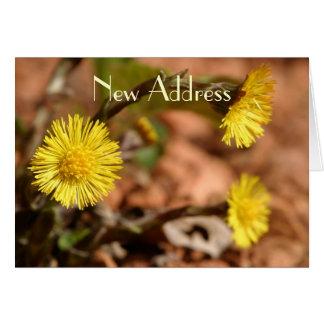 Dandelion New Address Card