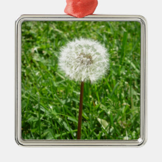 Dandelion Ornaments