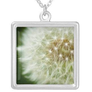 Dandelion Photo Necklace
