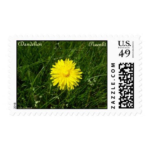 Dandelion, Pissenlit Stamp