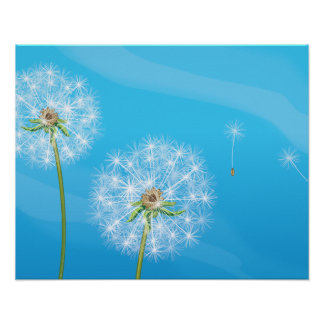 Dandelion Plant Poster