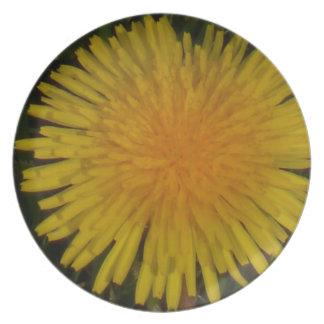 dandelion plate